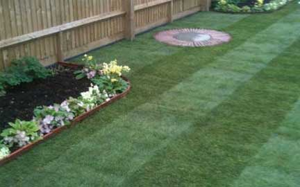 Professional Gardener in High Wycombe and Marlow